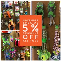 5% discount off all toys